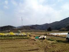 「チャレンジファーム」の耕作地